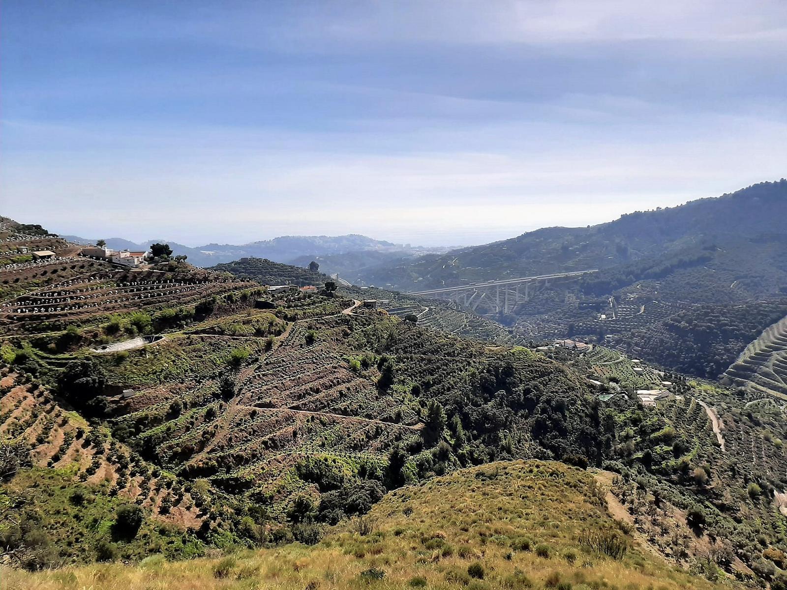 Plot of land , Almuñécar, Costa Tropical, Granada